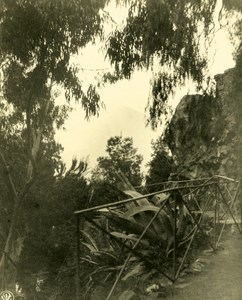 Chile Santiago Public Garden Old NPG Stereo Stereoview Photo 1900