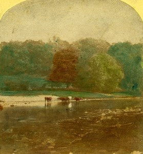 United Kingdom Landscape near Bolton Abbey Hand Colored Stereoview Photo 1860