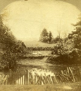 United Kingdom English Countryside Landscape Old Stereoview Photo 1860