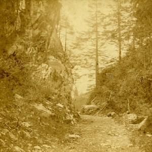 Germany Großherzogtum Baden Doulenthal landscape Old Stereoview Photo Fay 1860