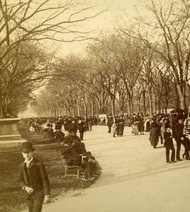 USA New York Central Park The Mall Old Stereoview Photo Campbell 1896