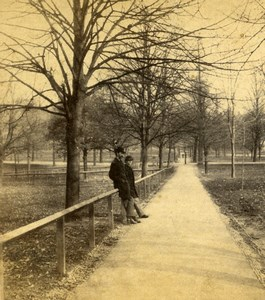 USA Boston Long Path Park Trees Old Stereoview Photo 1875