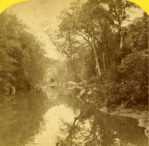 USA Pennsylvania Wissahickon Creek Stereoview Photo Purviance 1875
