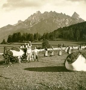 Italy South Tyrol Harvest wheat near Pusterthal Stereoview Photo Photochrom 1900