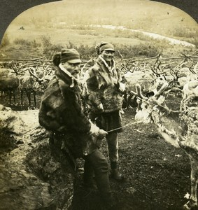 Norway Tromso Lapps & Reindeer Sami people Old Stereoview Photo Kelley 1910