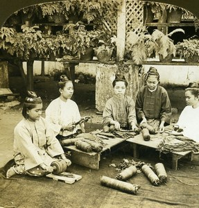 Burma Mopoon Women making Cigars Old Stereoview Photo HC White 1907