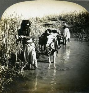 Palestine Haifa area Kishon River Crossing Old Stereoview Photo Keystone 1906