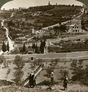 Palestine Jerusalem Gethsemane Mount of Olives Stereoview Photo Underwood 1899