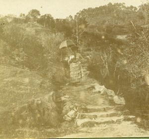 France French Riviera Nice Countryside Amateur Stereoview Photo Pourtoy 1900