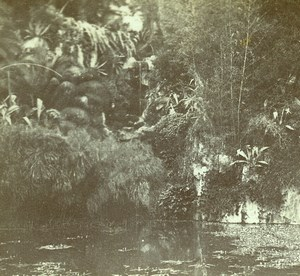 France French Riviera around Nice Lake Old Amateur Stereoview Photo Pourtoy 1900