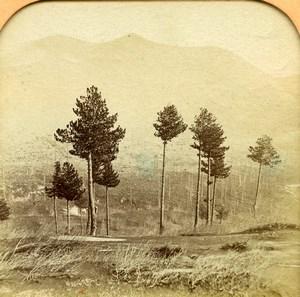 Italy Sicily Catania eruption Etna Volcano Old BK Photo Tissue Stereoview 1865