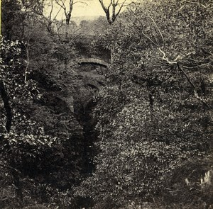 Wales Devil's Bridge Pont y Mynach Old Bedford? Stereoview Photo 1865