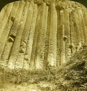 Ireland Giant's Causeway Organ Old Stereoview Photo H.C. White 1900