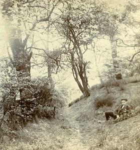 United Kingdom Riversvale Warwick Rainbow Forest Old Stereoview Photo 1903