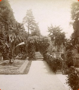 Italie Lac de Come Cadenabbia Jardins de la Villa Carlotta ancienne Photo Stereo Brogi 1880