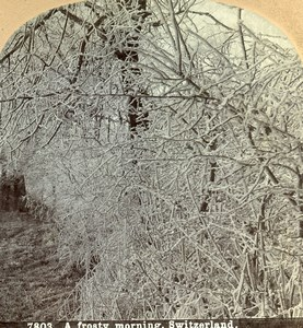 Switzerland Winter A Frosty Morning Old Stereoview Photo CH Graves 1880