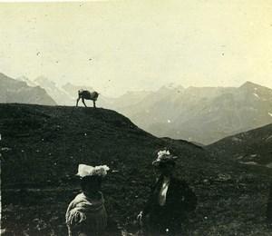 Switzerland Kleine Scheidegg Eiger Glacier Old Amateur Stereoview Photo 1900