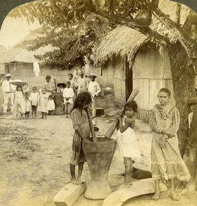 Panama Village Native Life Pounding Rice Old Photo Stereoview Underwood 1904