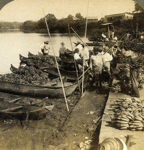 Panama Chagres River Indian Dugout Canoe Banana Trade Stereoview Underwood 1904