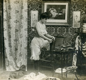 Woman Artistic Study Semi Nude Risque La Puce N.6 Old Photo Stereo SIP 1900