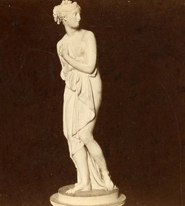 Italy Firenze Venus Canova Sculpture Old Brogi Stereoview Photo 1865