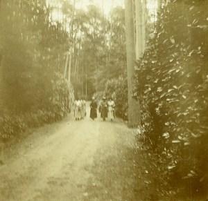 Belgique Brasschaet Polygone Château du Mick Drève ancienne Photo Stereo Amateur 1919