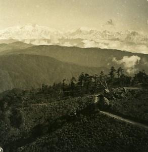 Sikkim Sikhim Himalaya Falut Phalut panorama Old Stereo Photo Kurt Boeck 1906