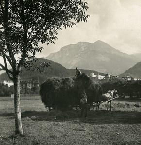 Suisse Interlaken vue prise du Höheweg Saxeten ancienne Stereo Photo NPG 1900