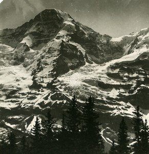 Switzerland Monch seen from Wengener Alps Old Stereo Photo 1900