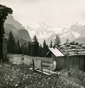 Switzerland Wengen Breithorn Mountain Breithorn Tschingelhorn Stereo Photo 1900