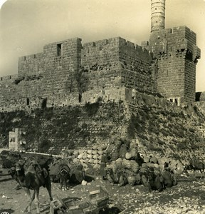 Middle East Israel Jerusalem Wall Bedouins Old NPG Stereo Photo 1900
