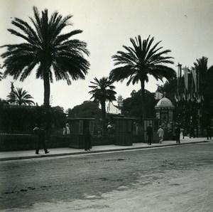 France Nice Avenue Massena Jardin Public ancienne Photo Stereo Amateur Possemiers 1900