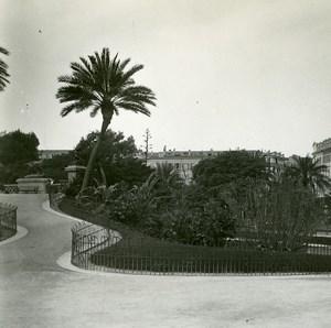 France Nice Jardin Public montée vers la Terrasse ancienne Photo Stereo Amateur Possemiers 1900