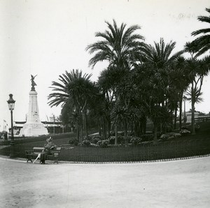 France Nice Public garden Yucca Old Amateur Stereo Photo Possemiers 1900