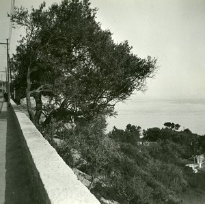 France road Nice to Villefranche Mont Boron Amateur Stereo Photo Possemiers 1900