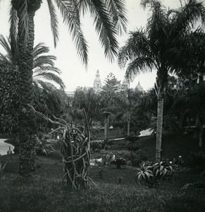 Monaco Monte Carlo Casino gardens Old Amateur Stereo Photo Possemiers 1900