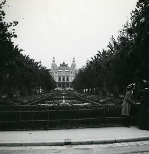 Monaco Monte Carlo Casino Palm Trees Old Amateur Stereo Photo Possemiers 1900