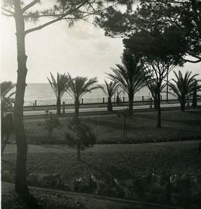 Italie Arenzano les Jardins Ancienne Photo Stereo NPG 1900