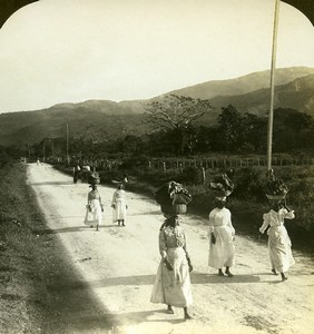 Jamaica Market Women on road to Kingston Market Old White Stereoview Photo 1900