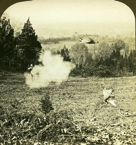 USA a wing shot Quail Hunting in the West Old Young Stereoview Photo 1900