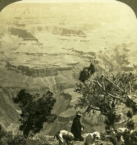 USA Colorado Grand Canyon Bright Angel Creek Old Young Stereoview Photo 1900