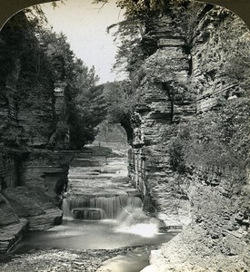 New York Sylvan Gorge Watkins Glen American Stereoscopic Stereoview Photo 1900
