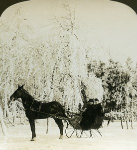 USA Wonderful Winter Niagara falls Horse Sleigh American Stereoscopic Photo 1900