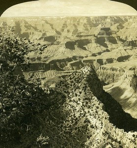 USA Arizona Grand Canyon Panorama Old White Stereoview Photo 1900