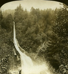 USA Oregon a Lumber Flume Mill to Railroad Old White Stereoview Photo 1900