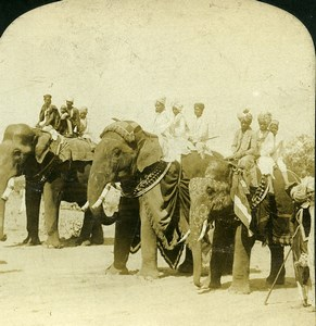 India Jaipur elephants of Maharaja on Parade Old White Stereoview Photo 1900