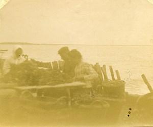 France vue de mer Pêcheurs de moules Ancienne Stereo Photo amateur 1900