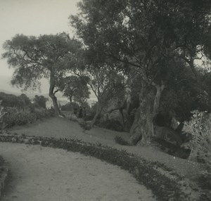 France Corse Ajaccio grotte Napoleon Ancienne Photo Stereo Possemiers 1920
