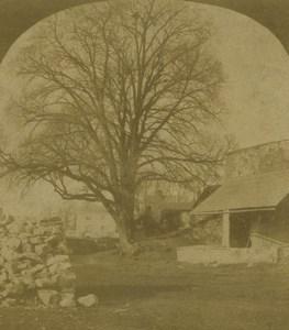 United Kingdom Devon Countess Wear Lime Kiln Old Stereoview Photo 1860