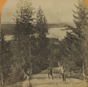 Norway Ringerike panorama Forest Fjord Old Stereoview Photo 1880